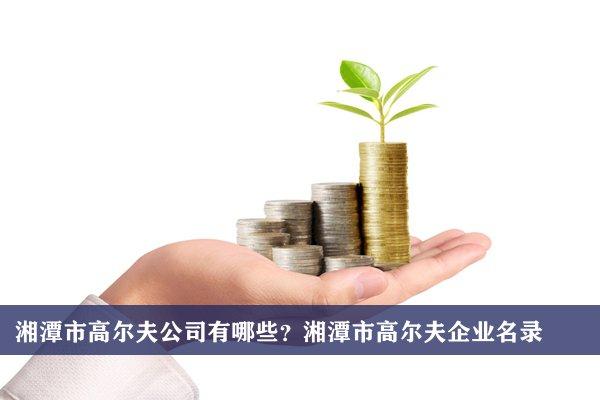 湘潭市高尔夫公司有哪些?湘潭高尔夫企业名录