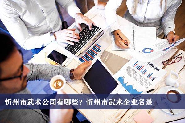 忻州市武术公司有哪些?忻州武术企业名录