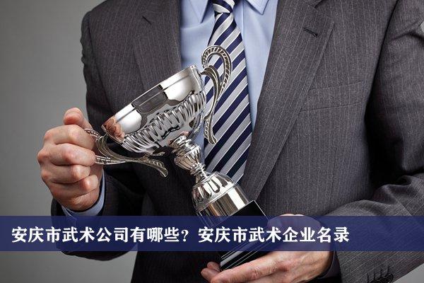 安庆市武术公司有哪些?安庆武术企业名录
