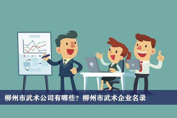 柳州市武术公司有哪些?柳州武术企业名录