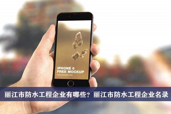 丽江市防水工程公司有哪些?丽江防水工程企业名录