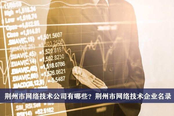 荆州市网络技术公司有哪些?荆州网络技术企业名录