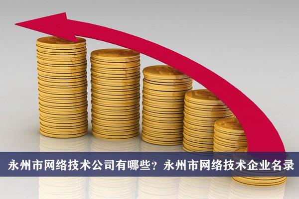 永州市网络技术公司有哪些?永州网络技术企业名录