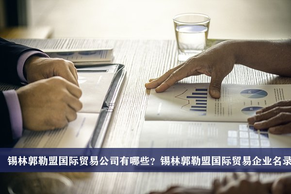 锡林郭勒盟国际贸易公司有哪些?锡林郭勒盟国际贸易企业名录