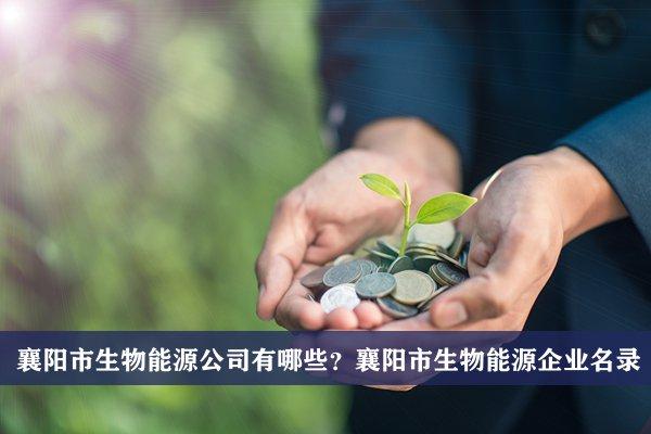 襄阳市生物能源公司有哪些?襄阳生物能源企业名录