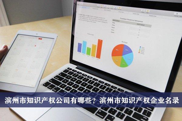 滨州市知识产权公司有哪些?滨州知识产权企业名录