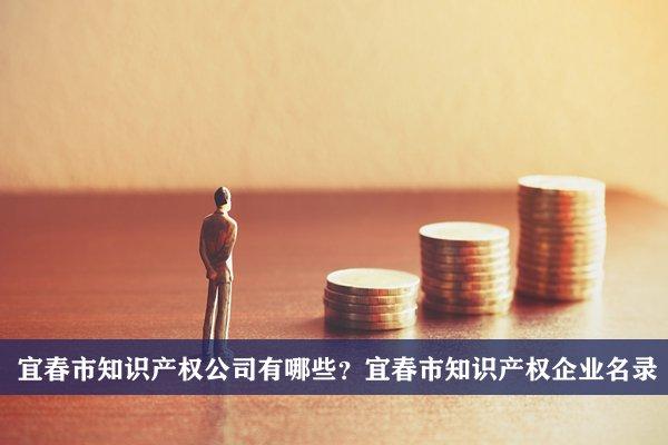 宜春市知识产权公司有哪些?宜春知识产权企业名录