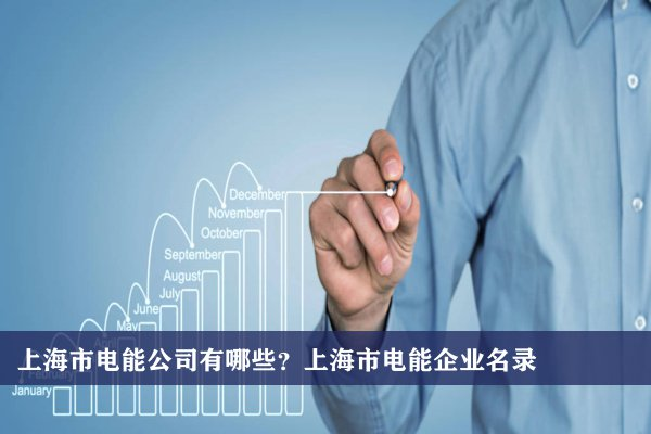 上海市電能公司有哪些?上海電能企業名錄