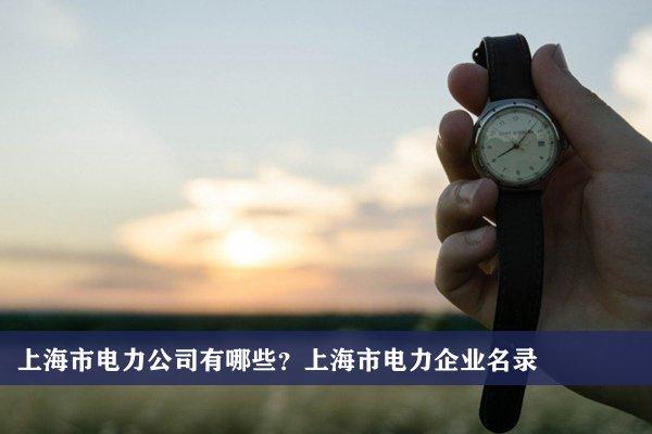 上海市電力公司有哪些?上海電力企業名錄