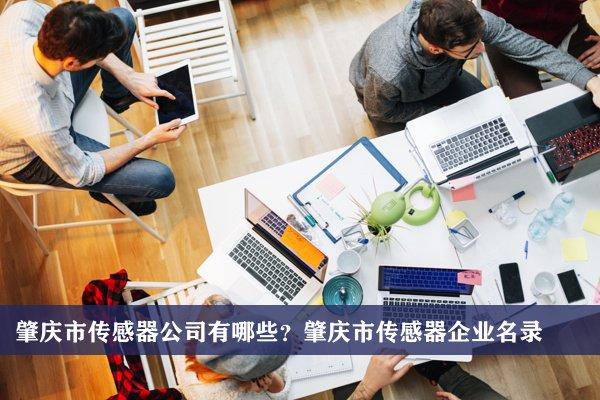 肇庆市传感器公司有哪些?肇庆传感器企业名录