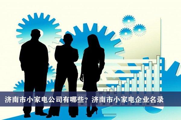 济南市小家电公司有哪些?济南小家电企业名录