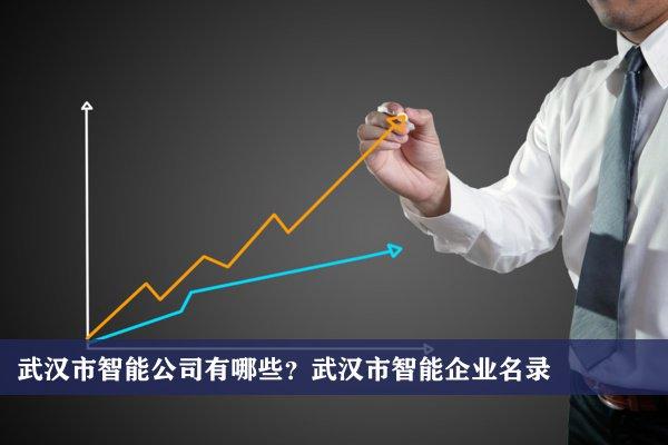 武汉市智能公司有哪些?武汉智能企业名录