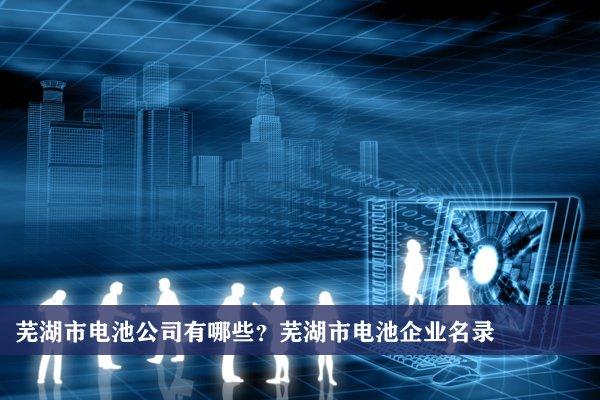 芜湖市电池公司有哪些?芜湖电池企业名录