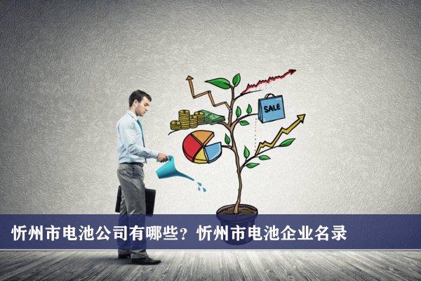 忻州市电池公司有哪些?忻州电池企业名录
