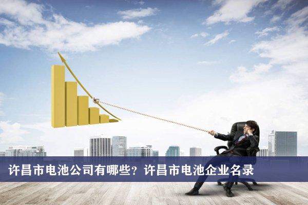 许昌市电池公司有哪些?许昌电池企业名录