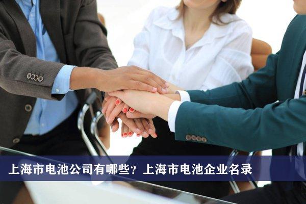 上海市电池公司有哪些?上海电池企业名录