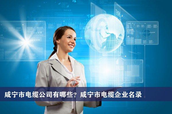 咸宁市电缆公司有哪些?咸宁电缆企业名录