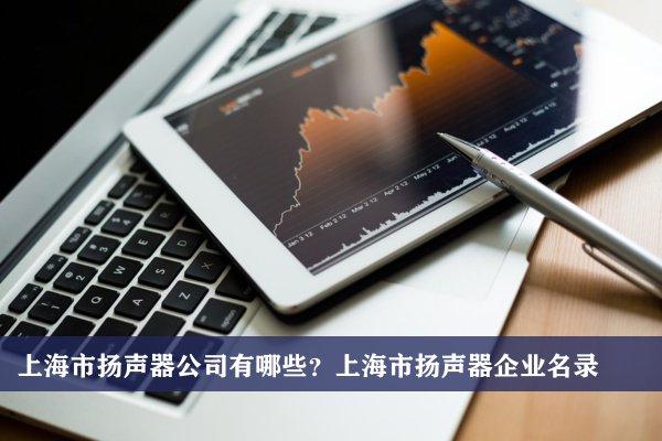 上海市扬声器公司有哪些?上海扬声器企业名录