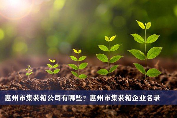 惠州市集装箱公司有哪些?惠州集装箱企业名录
